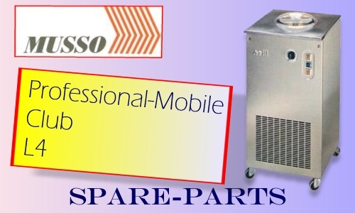 Professional Mobile - L3 - Club